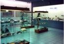 Μουσείο Φυσικής Ιστορίας Αιγαίου στη Σάμο