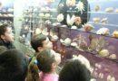 Goulandris Museum of Natural History